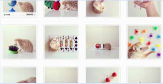 AppTalk Instagram